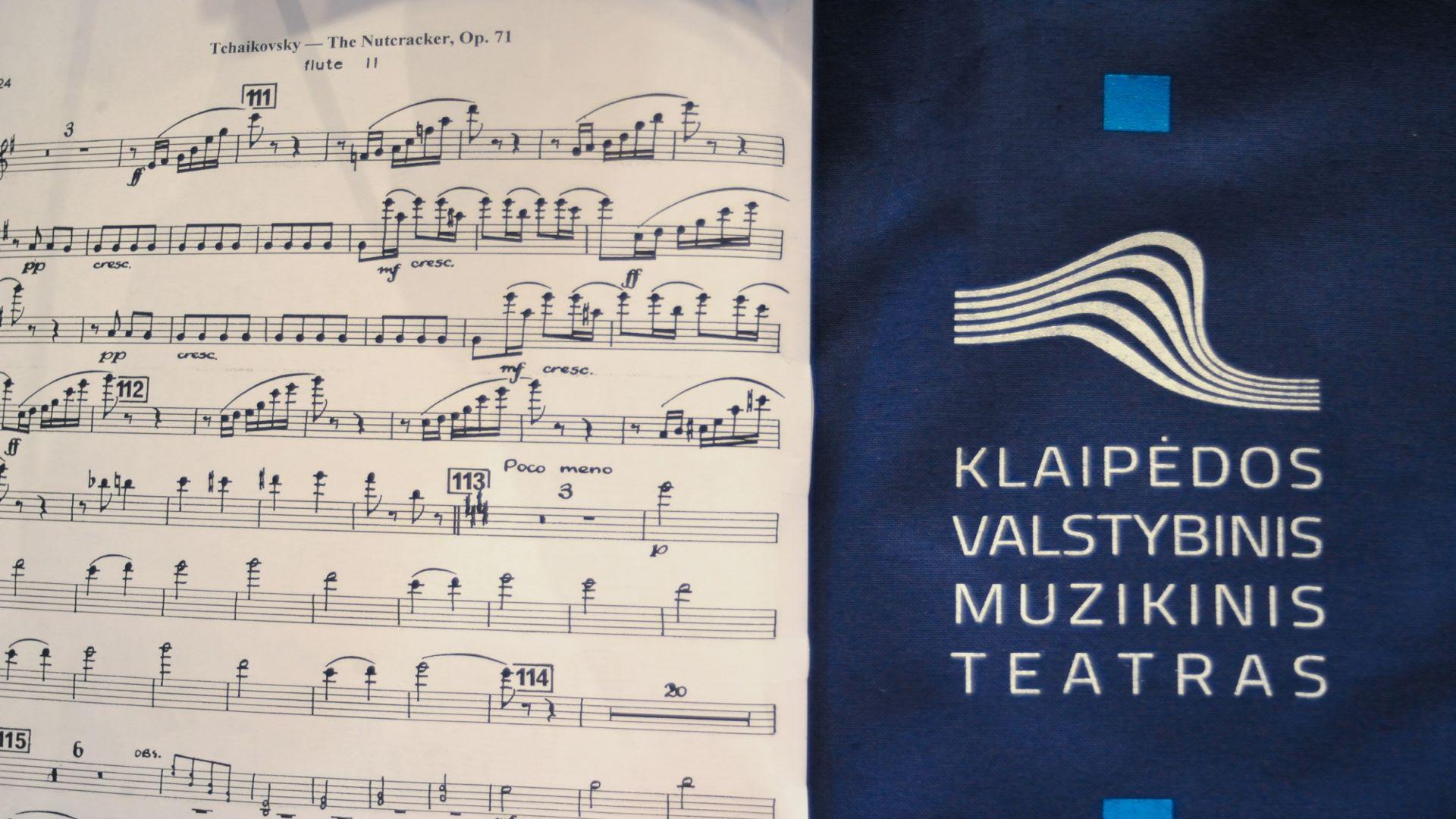 Į Vilniaus knygų mugę atvyksta klajojantis pajūrio Muzikinis teatras